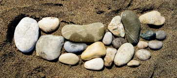 stonefootCrop