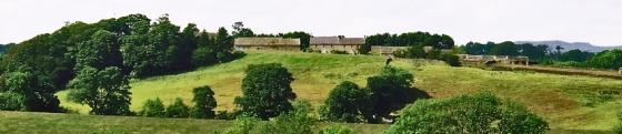 View_harnham_hill