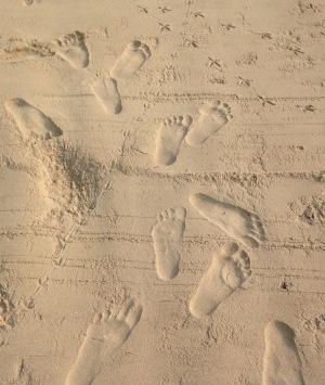 M footprints